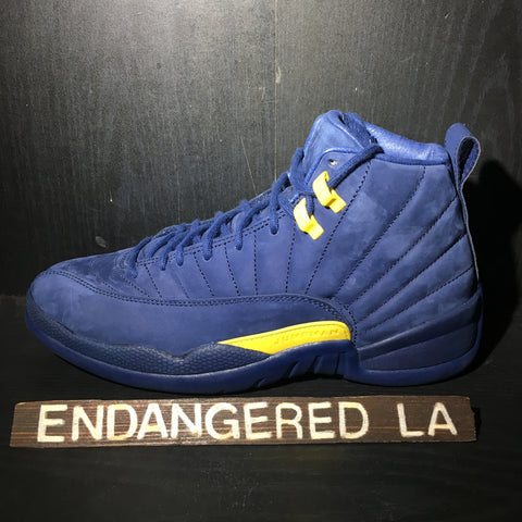 Air Jordan 12 Michigan Sz 11