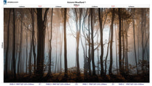 Load image into Gallery viewer, Altro Whiterock Digiclad Kit Autumn Woodland 1 - Altrodirect