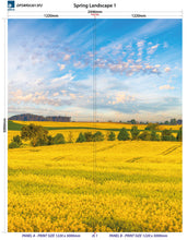 Load image into Gallery viewer, Altro Whiterock Digiclad Kit Spring Landscape 1 - Altrodirect