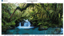 Load image into Gallery viewer, Altro Whiterock Digiclad Kit Spring Woodland Waterfall 1 - Altrodirect