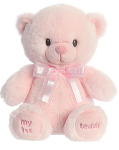 First Teddy - Pink and Blue