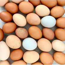 Load image into Gallery viewer, Organic Free Range Chicken Eggs