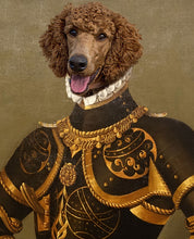 Load image into Gallery viewer, Mr. Black and Gold (pets)