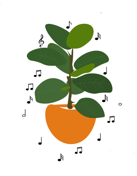 Plants and Music