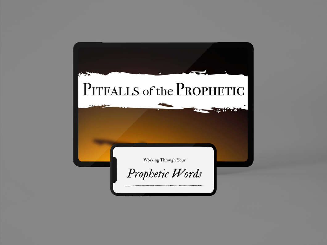 The Prophetic Insights Bundle