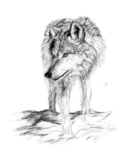 Load image into Gallery viewer, Wolf