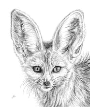 Load image into Gallery viewer, Fennec Fox