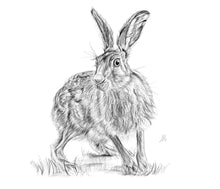 Load image into Gallery viewer, Startled Hare