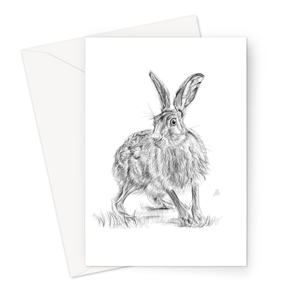 Startled Hare Greeting Card
