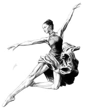 Load image into Gallery viewer, Ballet Dancer 2