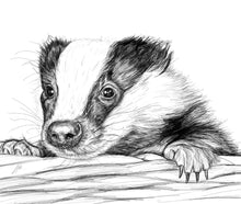 Load image into Gallery viewer, Badger