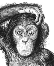 Load image into Gallery viewer, Young Chimp