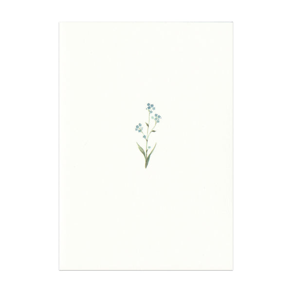 Pack of 5 Forget Me Not Cards