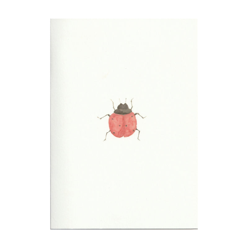 Pack of 5 Ladybird Cards