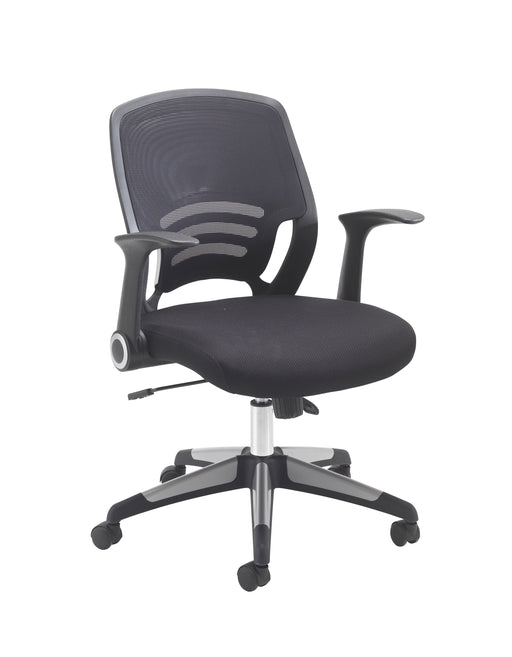 Carbon Chair Mesh Office Chair