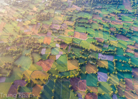 Colors of Fields