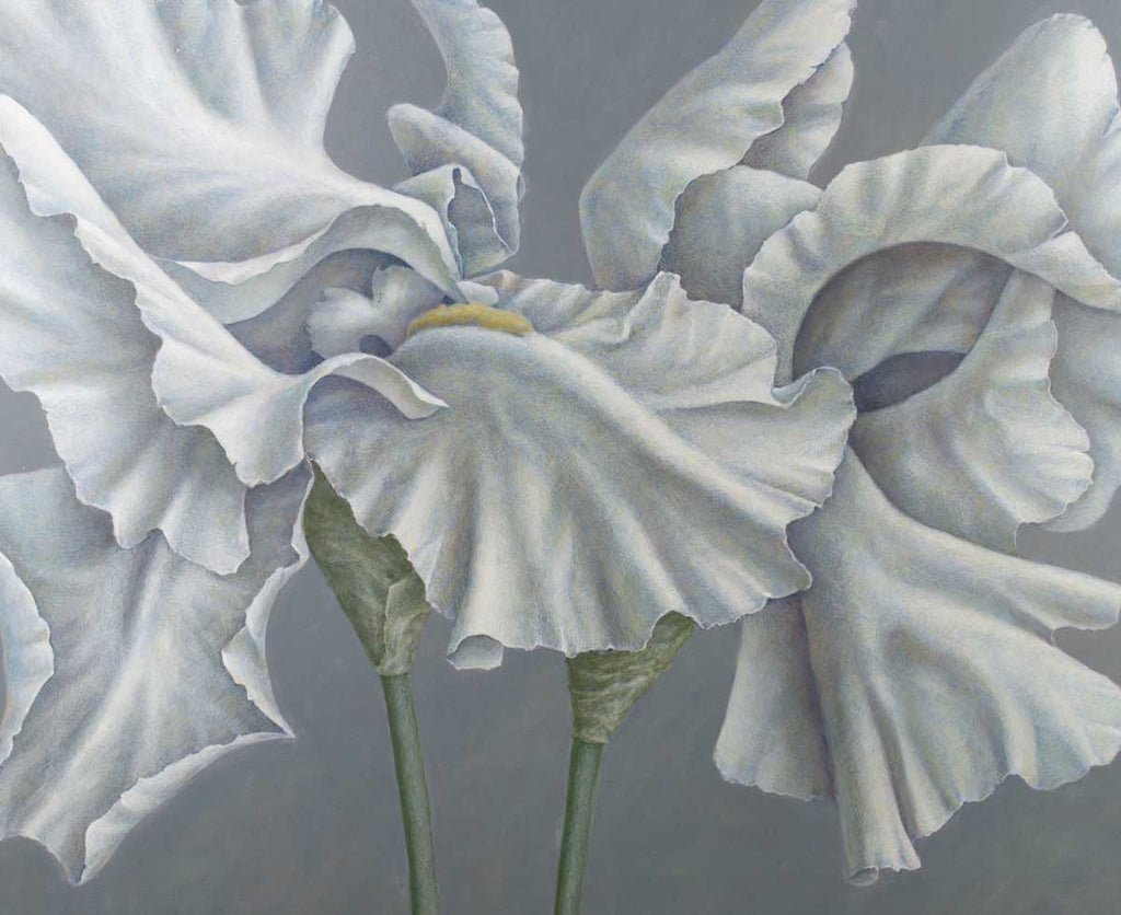 DETAIL: Neil Driver - Irises