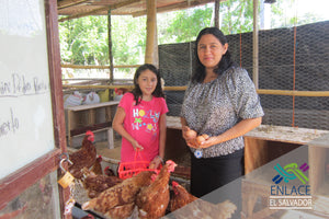 Family Chicken Farms and Food Security in Central America