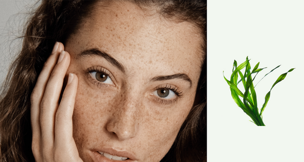 Plankton Extract: The Must-Know Anti-Ageing Ingredient | náu skin – Farm-to-Face Natural Skincare