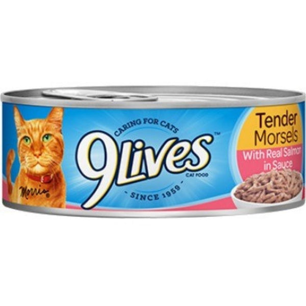 9 LIVES CAT FD  24/5.5OZ SALMON