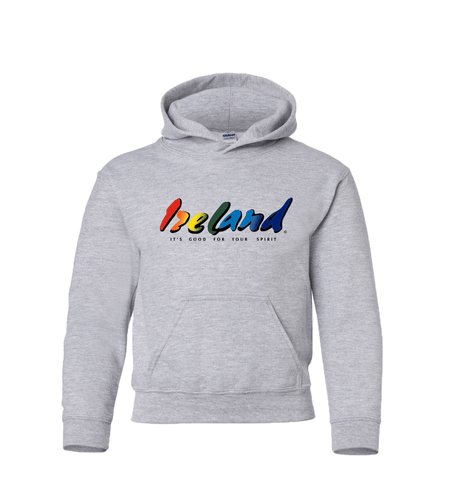 Grey Kids Hoodies - mycoloursclothing