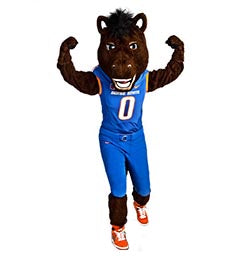 Horse or Bronco mascot costume - Alinco Costumes