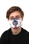 husky dog face mask face guard