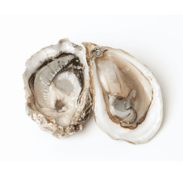 Chef's Choice Oysters 6-Month Subscription