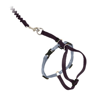 Come With Me Kitty™ Black Cat Harness & Bungee Leash