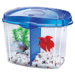 AQUEON BETTA BOWL KIT WITH DIVIDER