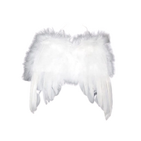 Angel Wings w/ Feathers