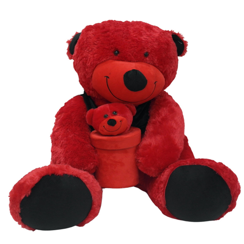 Large Valentines Bear w/ Gift Box - Akil Bros