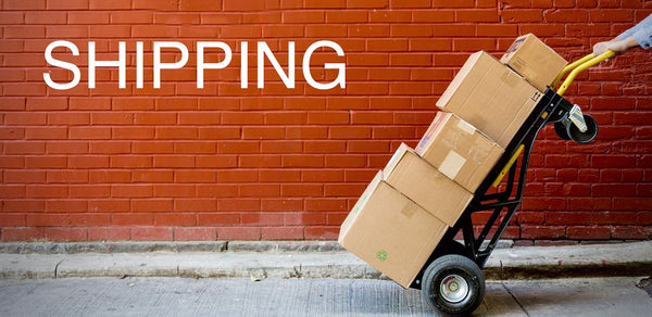 e-scooter shipping image