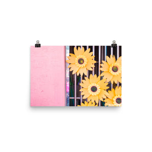 Yellow Flowers & Pink Walls Poster