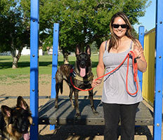 Trainers love our Dog Leashes