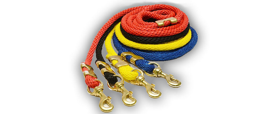 Dog leashes in red, black, yellow and blue