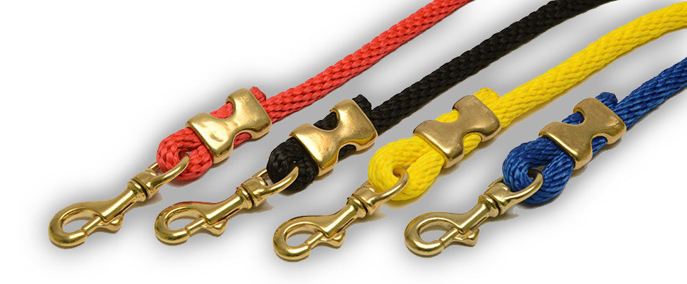 Beautiful Dog Leash