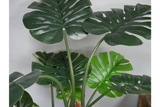Artificial Cheese Plant 6