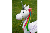 Metal Rainbow Unicorn Female 5