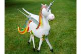 Metal Rainbow Unicorn Male 5
