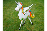 Metal Rainbow Unicorn Male