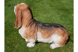 Resin Basset Hound Dog 6