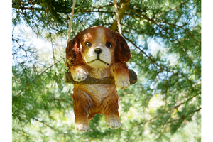 Swinging Tree Puppy