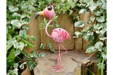 Wide-Eyed Pink Flamingo 3