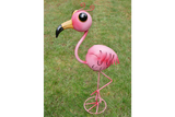 Wide-Eyed Pink Flamingo 4