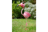 Wide-Eyed Pink Flamingo 5