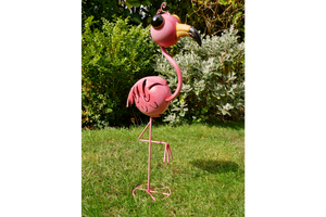 Wide-Eyed Pink Flamingo 6