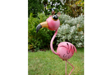 Wide-Eyed Pink Flamingo 7