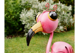 Wide-Eyed Pink Flamingo
