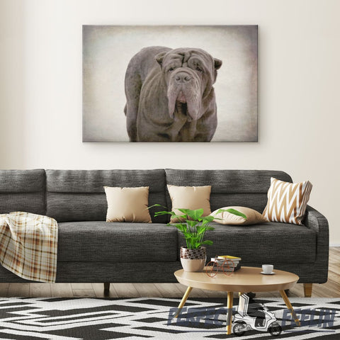 Apollo Big and Cool Dog Classic Background Canvas Wall Art